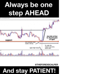Patience in Forex Trading