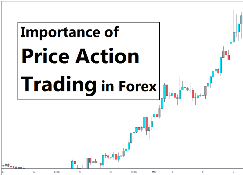 Importance of Price Action Trading in Forex