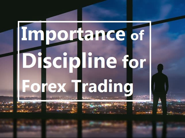 Why Discipline is Important for Forex Trading