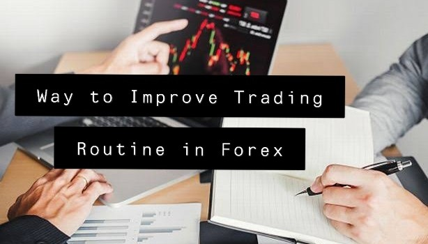 Way to Improve Trading Routine in Forex