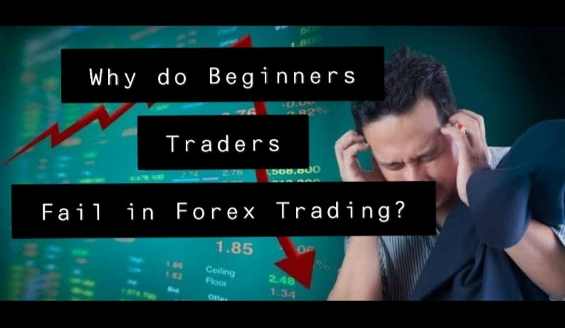 Why do Beginners Traders Fail in Forex Trading