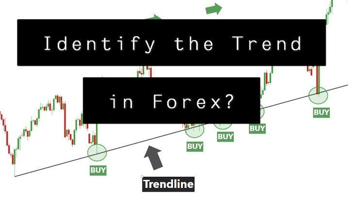 How to Identify the Trend in Forex Market