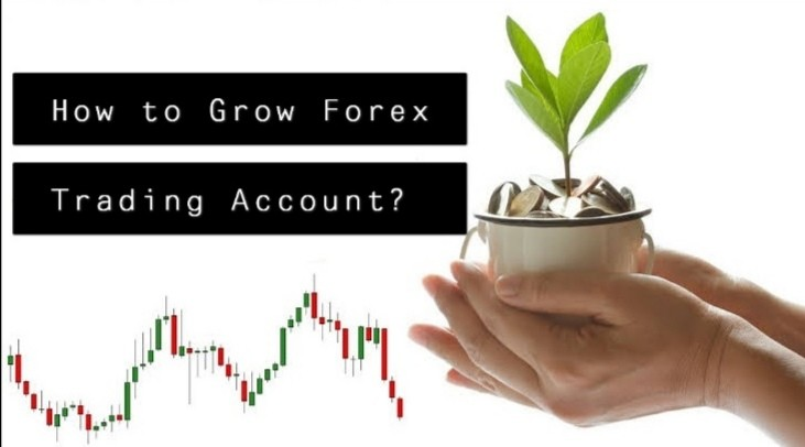 How to Grow Forex Trading Account?
