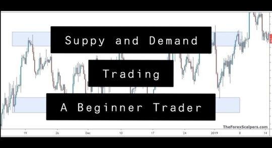 Supply and Demand Trading: A Beginner Forex Traders